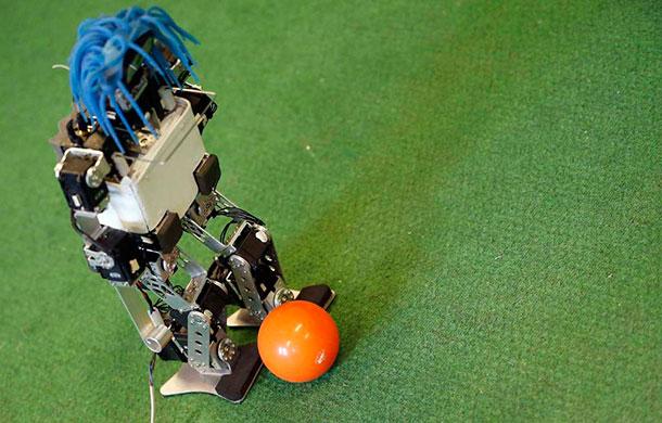 Rhoban foot robots