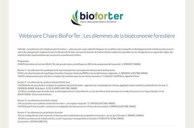 «Les dilemmes de la bioéconomie forestière», premier webinaire de la chaire BioForTer