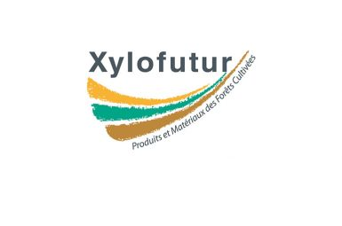 Appel à projets d'un de nos partenaires, Xylofutur